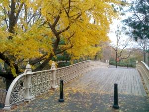 central_park_2
